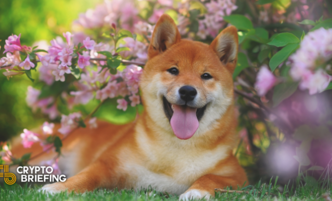 Dogecoin Dev Passes Away, Leaving Seven Year Legacy